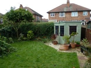 Q654.02 - Privet Hedge Reduction 03