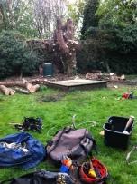 Brendan Tree Feller - job underway 3